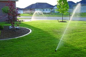 Sprinkler_101907_211