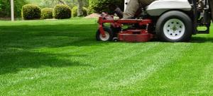 lawn-maintenance1